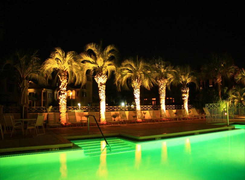 Palm Coast Low Voltage Landscape Lighting   VerdeGo