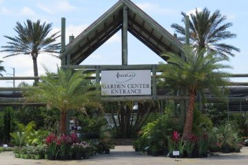 Garden Center Featured Image