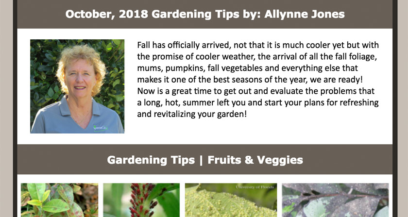 October 2018 Newsletter Featured Image
