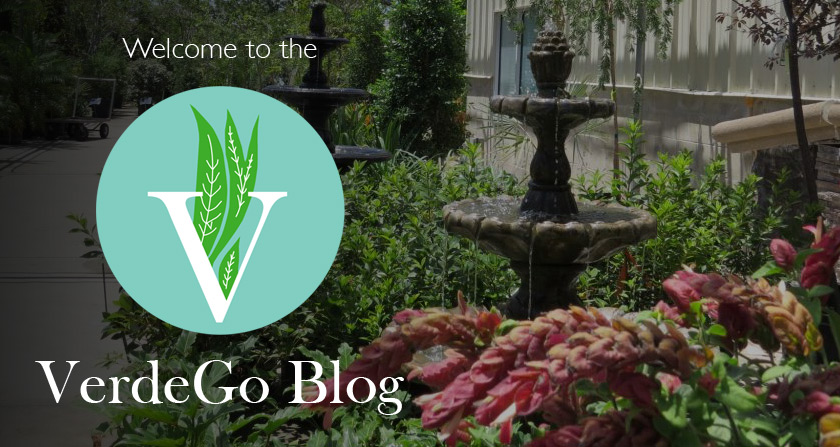 Welcome to the New VG Blog! Featured Image