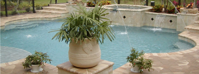 Plants for Pools Featured Image