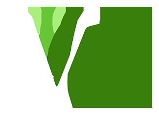 Verdego Welcome Logo