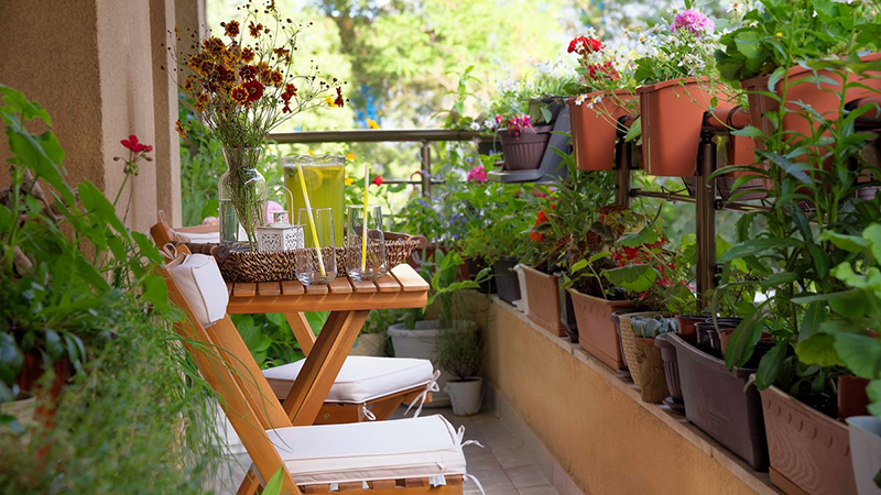 Balcony Gardens Featured Image